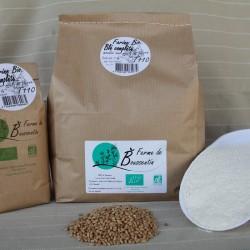 Farine de blé complète BIO 5 kg et 1kg, de la Ferme de Boussentin, en vente sur le Marché en ligne de la Conciergerie